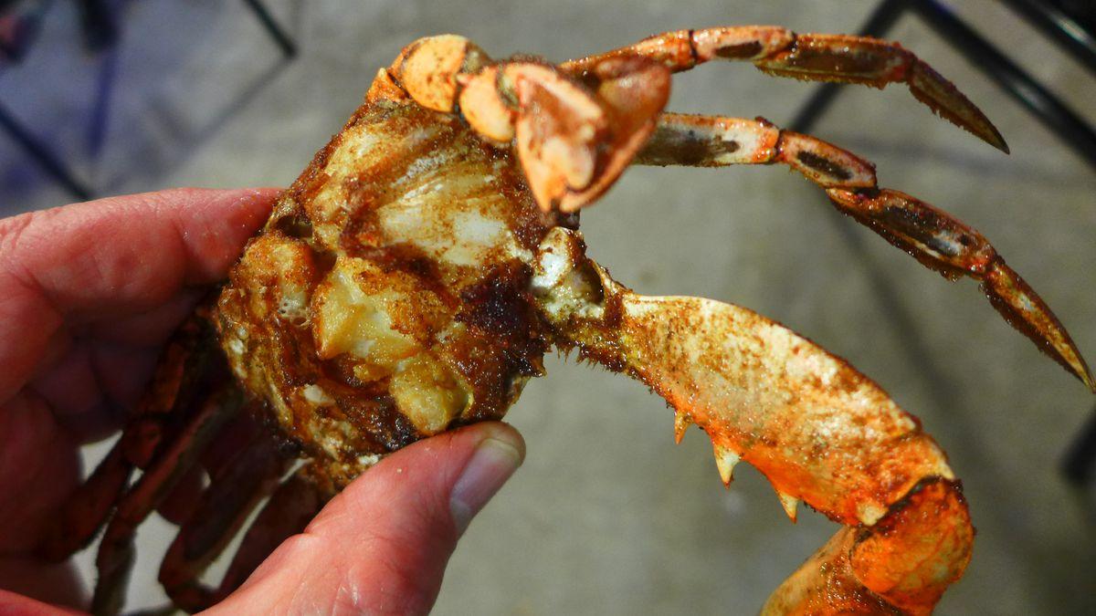 A crab from Sartin's Seafood