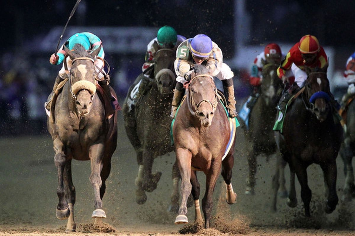 LOUISVILLE KY - NOVEMBER 06:  Blame (center) with jockey Garrett Gomez aboard edges out Zenyatta (left) to win the Breeders' Cup Classic during the at Churchill Downs on November 6th, 2010 in Louisville Kentucky.  (Photo by Andy Lyons/Getty Images)