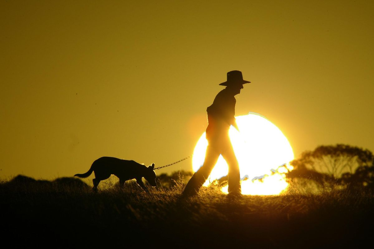 A farmer and his dog enjoy the morning sun, 21 February 2004. THE AGE Picture b