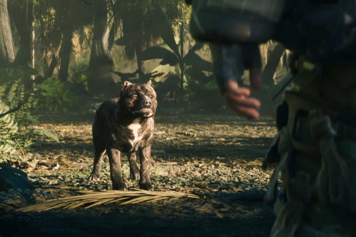 Call of Duty: Black Ops 4's dogs are making everyone
