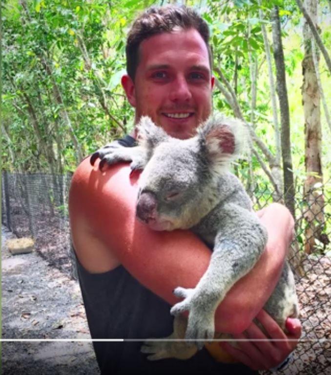 Wade Lees Koala