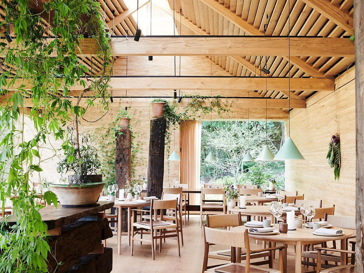A restaurant interior that resembles a barn with steeped roof and exposed beams over soft four-top wood tables, wood flooring, a bar to one side, all draped in hanging plants