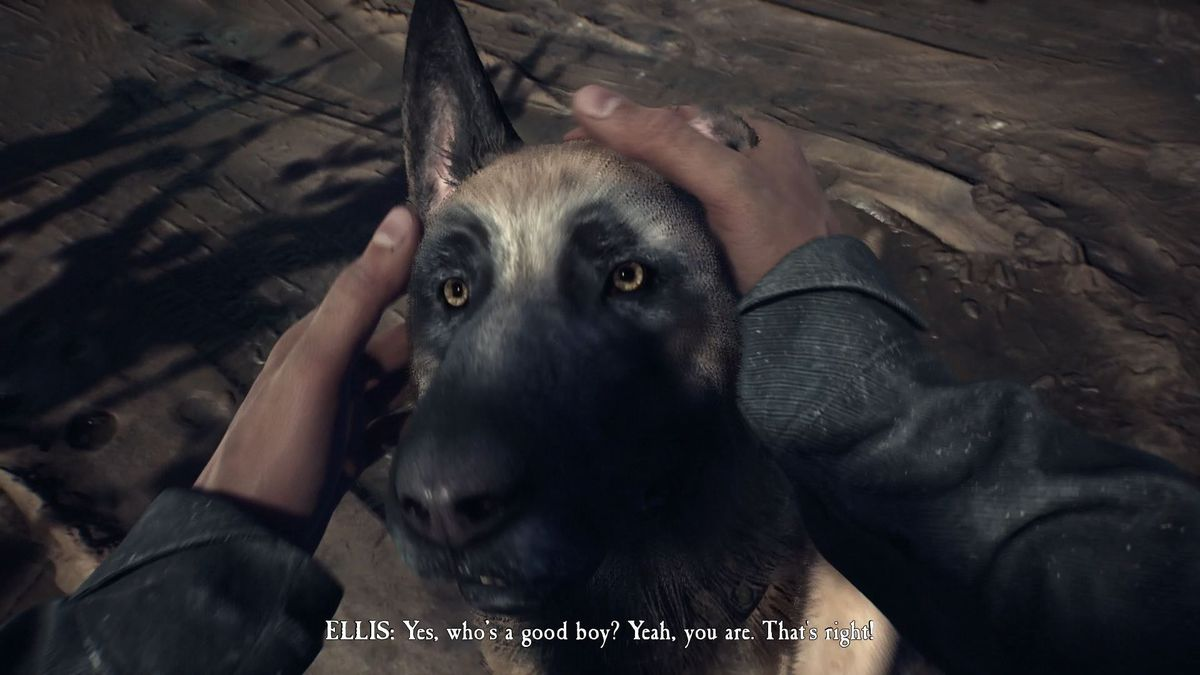 Blair Witch Video Game Review I M Here For Bullet A Very Good Dog Polygon