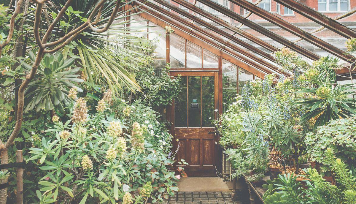 Secret Gardens A Global Tour Of Hidden Urban Oases Curbed