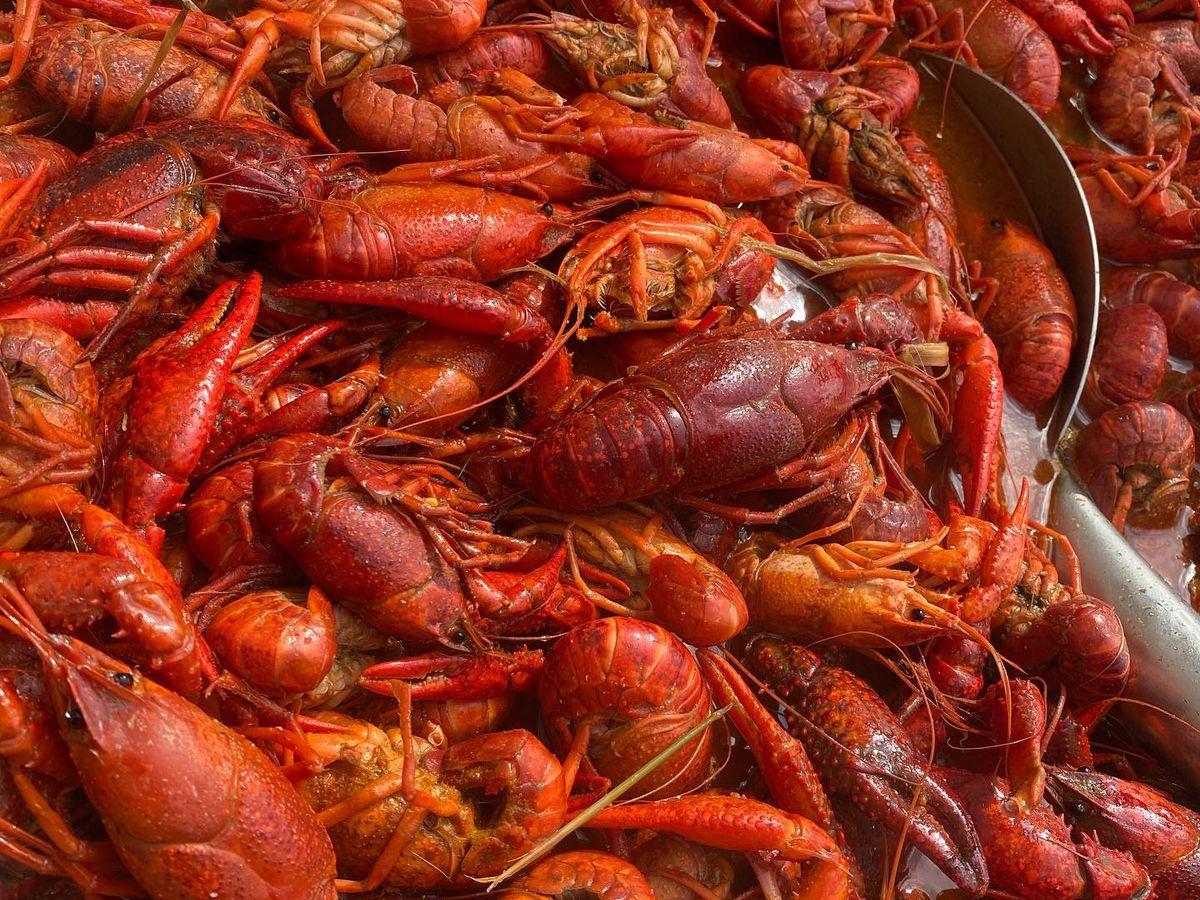 Crawfish from Down South CaJJun Eats