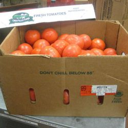 They use somewhere between 15 and 20 of these 20-pound cases each week, an average of 350 pounds of tomatoes.