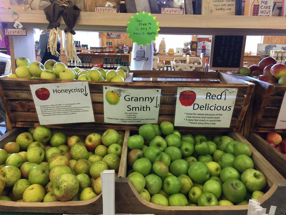 Bins filled with Honeycrisp, Granny Smith and Red Delicious apples in a country orchard market