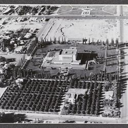 An aerial view of the Mesa Arizona Temple circa 1950. Its 20-acre grounds were used to grow plants such as citrus trees, pictured here, on the south end of the property. During the Depression, alfalfa and corn was grown.