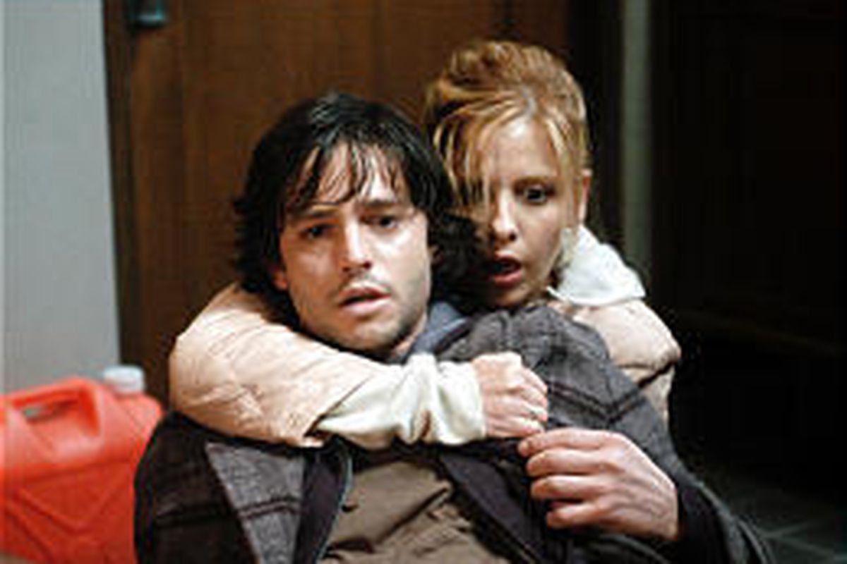 """Jason Behr and Sarah Michelle Gellar star in """"The Grudge."""""""
