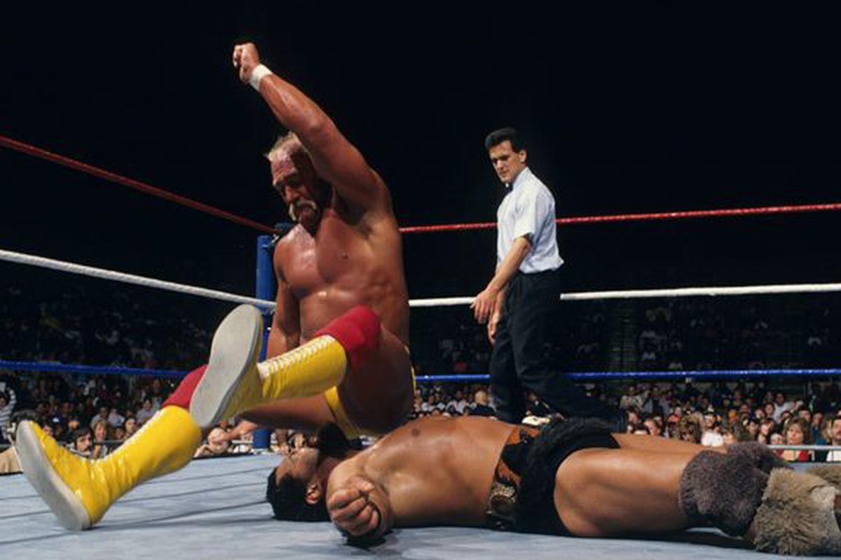 Hulk hogan back in the ring-8573