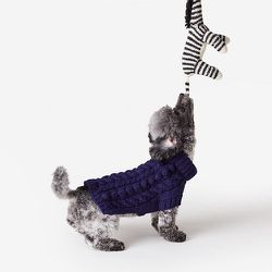 """<strong>Ware of the Dog</strong> Cable Turtleneck Dog Sweater, <a href=""""http://www.stevenalan.com/116619.html#cgid=home-home-goods-dog&start=0&hitcount=16"""">$70</a> at Steven Alan"""