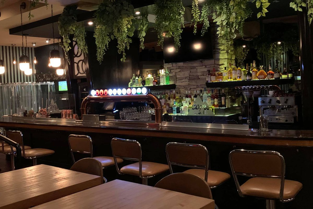 Bar with five stools and greenery.