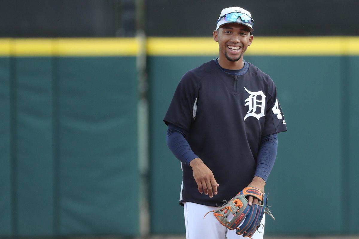 MLB: Spring Training-Tampa Bay Rays at Detroit Tigers
