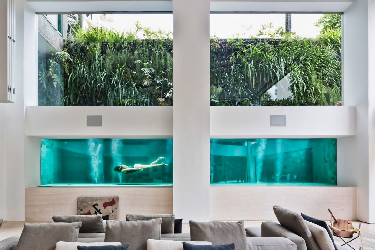 Dramatic apartment renovation puts glass pool center stage ...