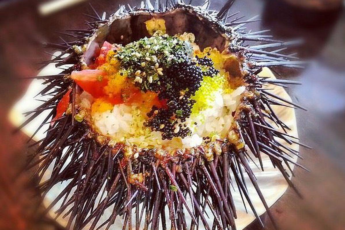 Uni sashimi bowl  @ Beach Live restaurant, Buena Park, CA by KayOne73