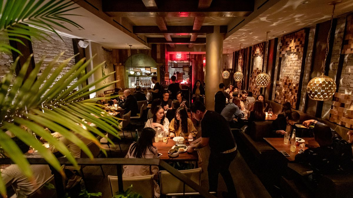 Wayan's dark wood dining room is filled with people, plus a tropical plant in the foreground