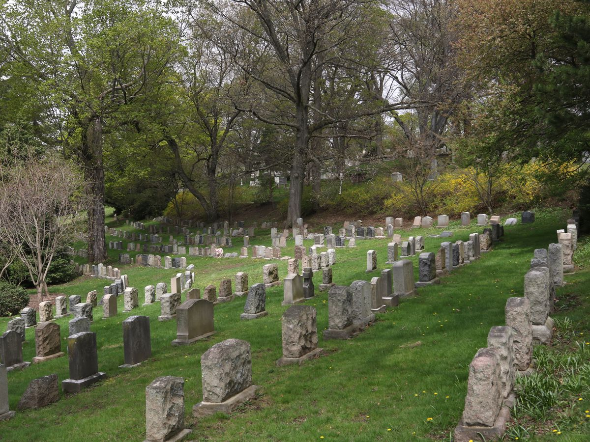 Rows of headstones amid a nicely manicured lawn.