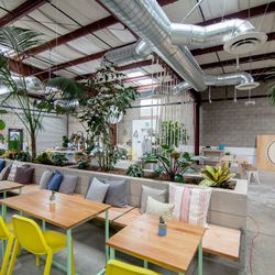 The Springs's raw vegan restaurant is focused on serving delicious dishes featuring seasonal produce. So you can expect the menu to change as the seasons do. Some current highlights include sushi, pho, spaghetti alla carbonara, and green curry. There's al