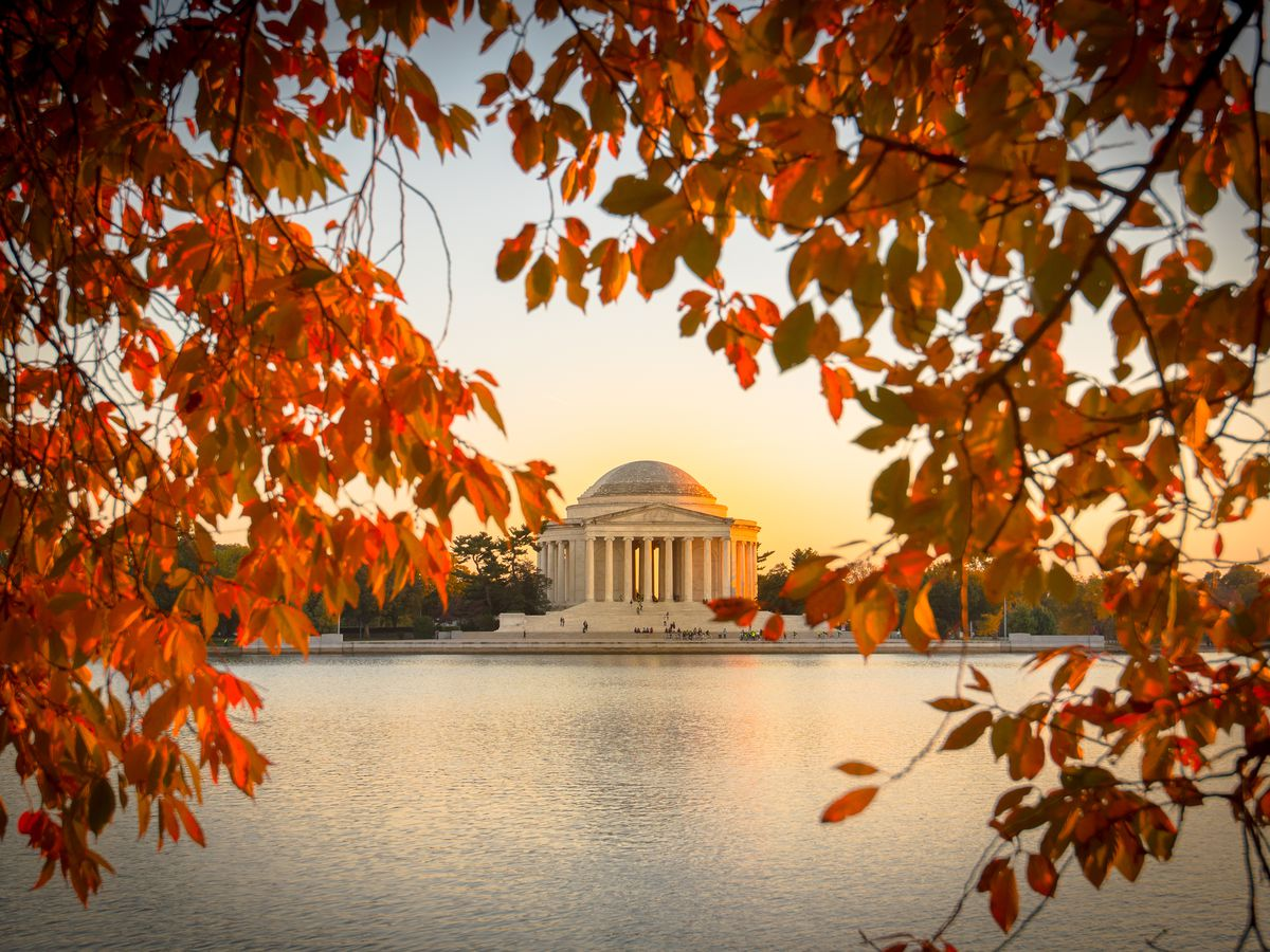 18 Great Spots For Admiring Fall Foliage In Washington D C Curbed Dc