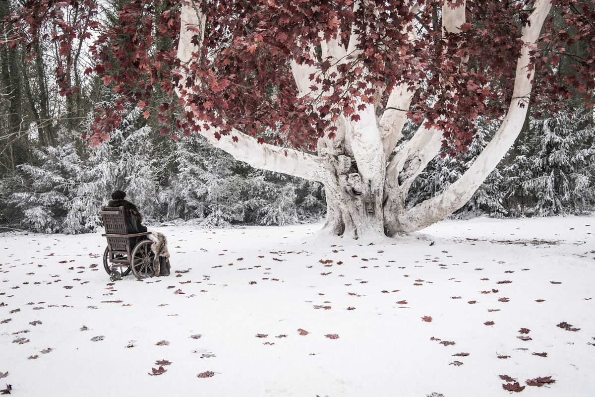 Game of Thrones season 8 episode 2 - Bran sitting by the weirwood tree at Winterfell