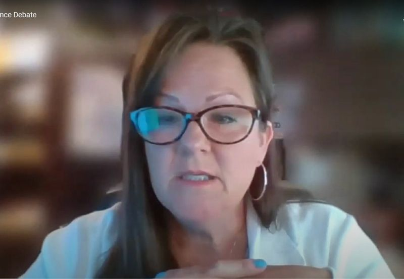 Cook County Board of Review Commissioner Tammy Wendt speaks during a virtual board meeting held in June.