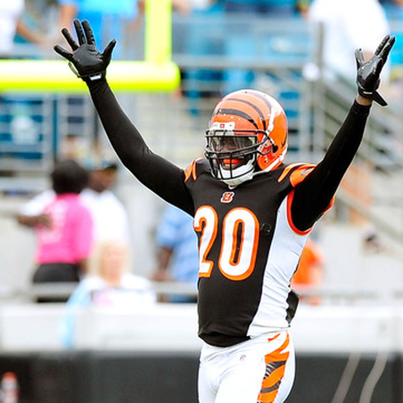 Top-20 Bengals Players of 2013: No. 4 Safety Reggie Nelson - Cincy ...
