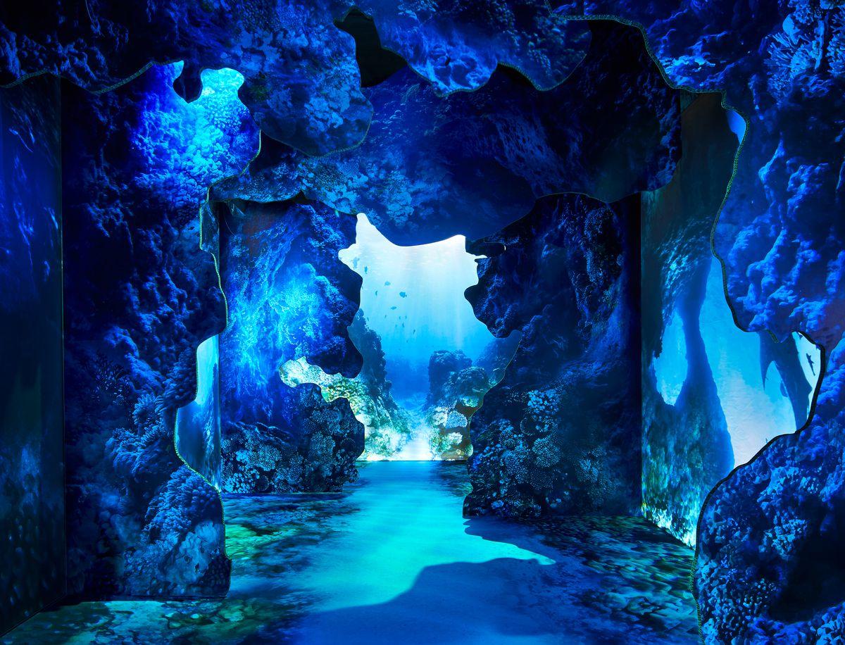 Underwater scene with glowing blue lights.