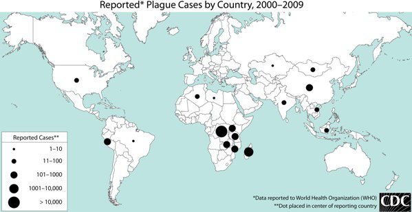 CDC plague world map