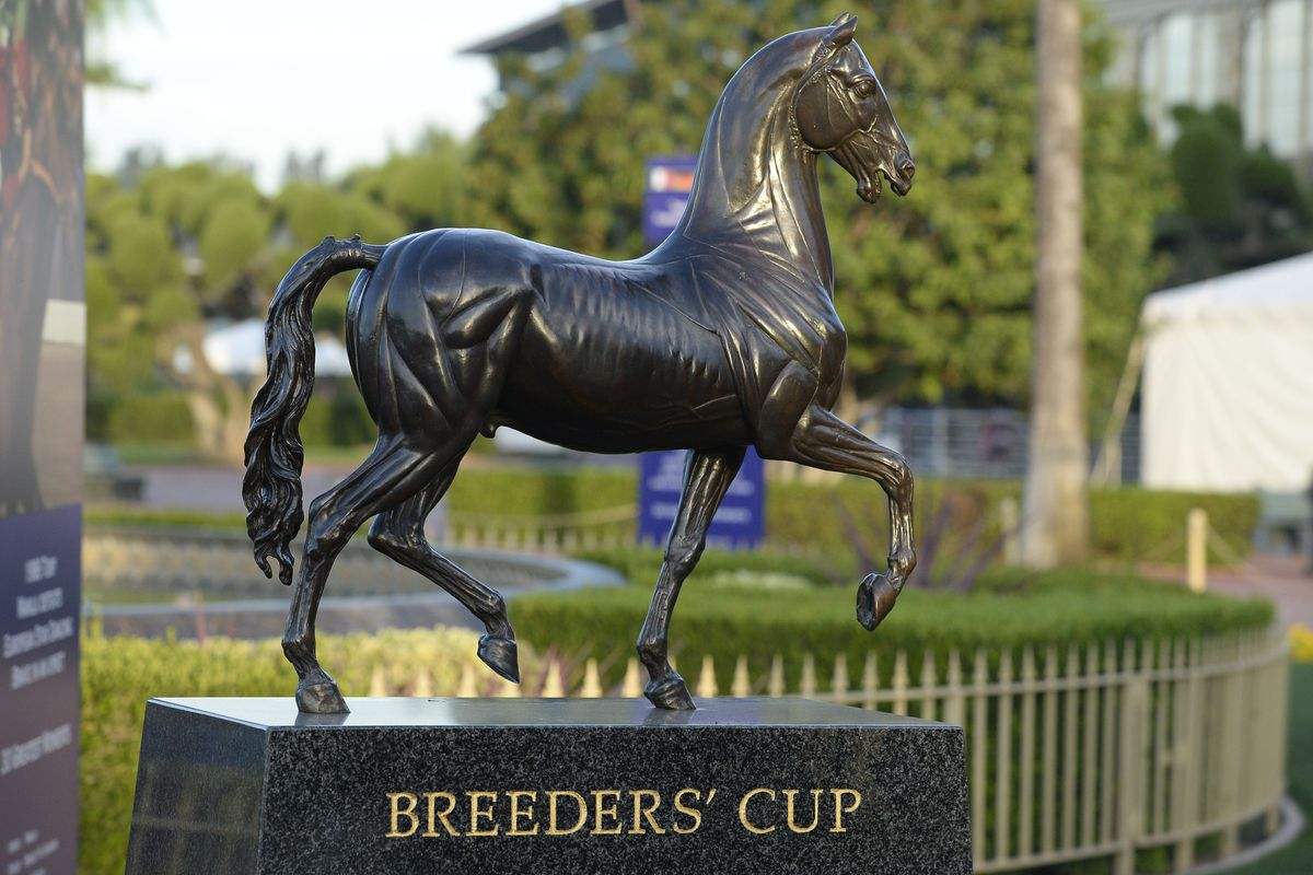 Breeders Cup 2014 Race Schedule Post Time Odds And