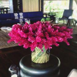 François loves floral arrangements.