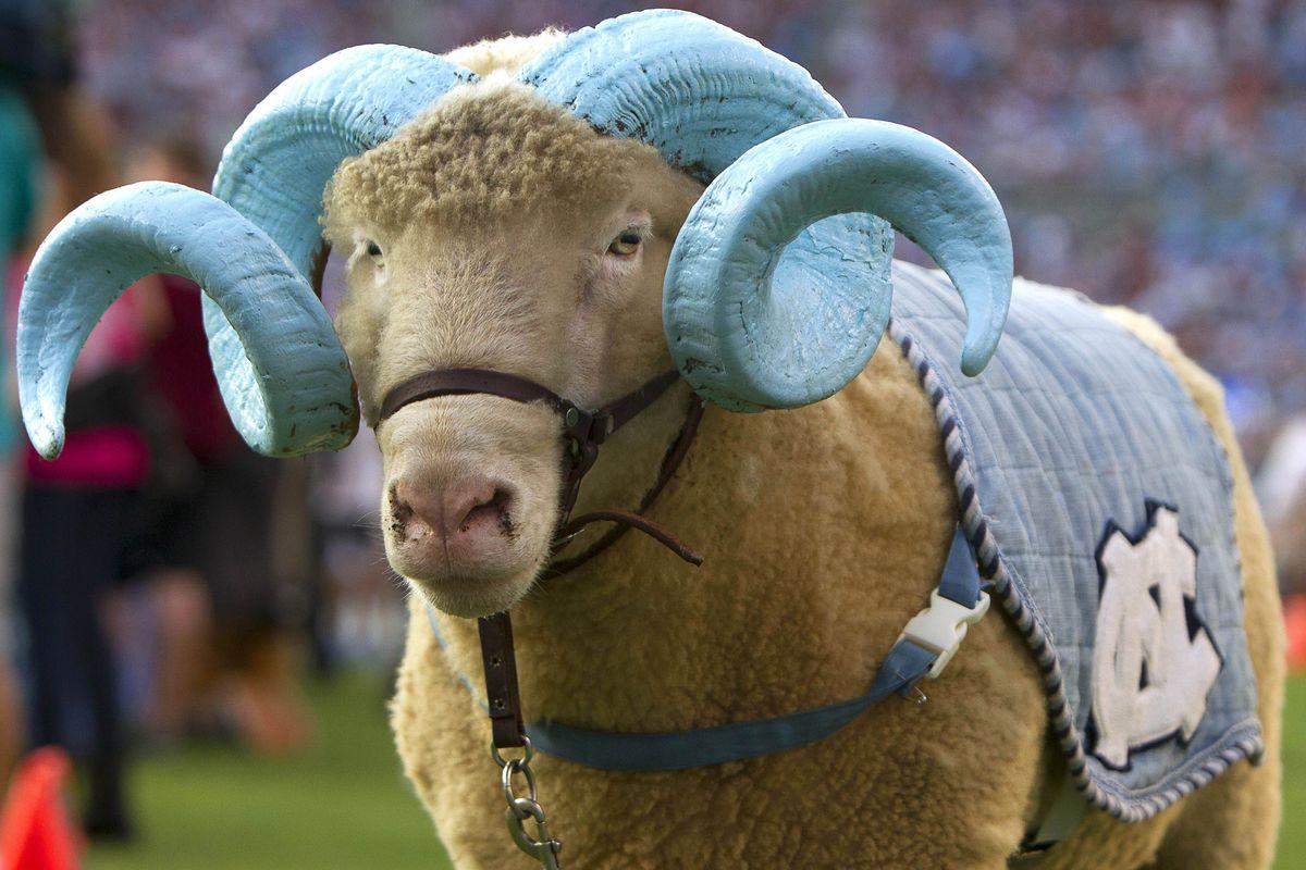 Nice horns, buddy.