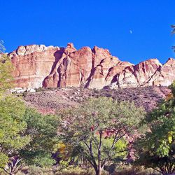 Visitors can harvest their own fruit in Capitol Reef's historic orchards.