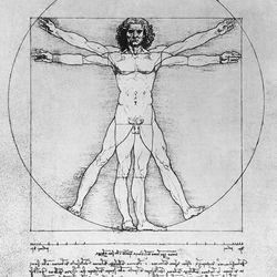 Wardrobe malfunction! Leonardo Da Vinci seemed to have forgotten something at home sometime around 1485-1490.