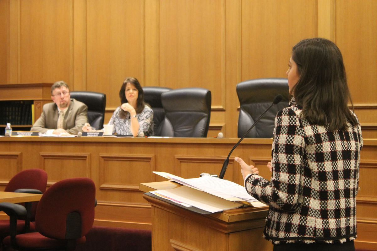 Elizabeth Fiveash, assistant commissioner for policy and legislative affairs for the Tennessee Department of Education, speaks to a House education panel about proposed revisions to Tennessee's charter school law.