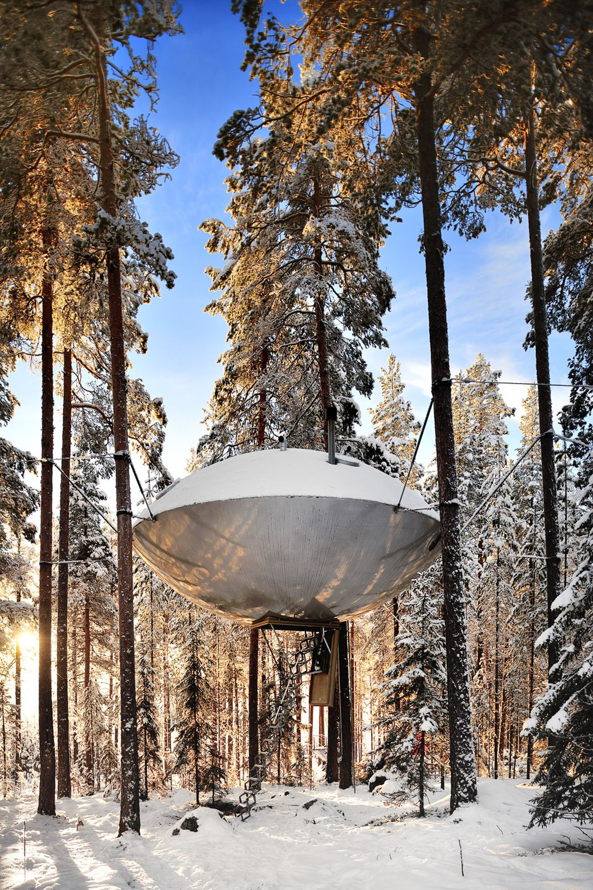 invisible tree house hotel. Accessible By An Electric Ladder, Is Fitted With Light-colored Wood And Keyhole Windows, Evocative Of What One Might Find In A Bird House. Invisible Tree House Hotel M