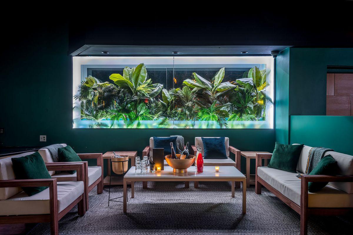 Lounge area with foliage at Canary, Santa Monica.