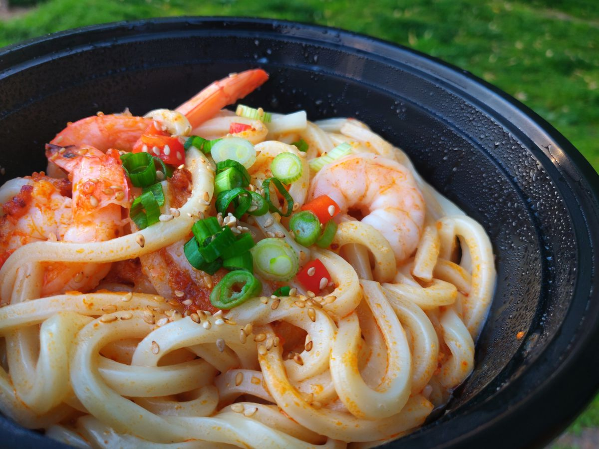 Close-up show of a black plastic bowl full of udon noodles, topped with shrimp and sliced scallions. Grass is visible in the background of the photo.
