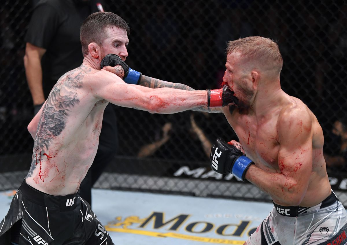 TJ Dillashaw and Cory Sandhagen trade shots at UFC Vegas 32.
