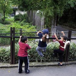 A trio of children climb and lean against the handrail of the closed Panda exhibit at the National Zoo in Washington the day after it was announced that the Zoo's female giant panda gave birth to a cub, Monday, Sept. 17, 2012, in Fairfax, Va. Mei Xiang gave birth Sunday at 10:46 pm, but the zoo staff has yet to see the new cub because Mei Xiang has built a large nest in her den.