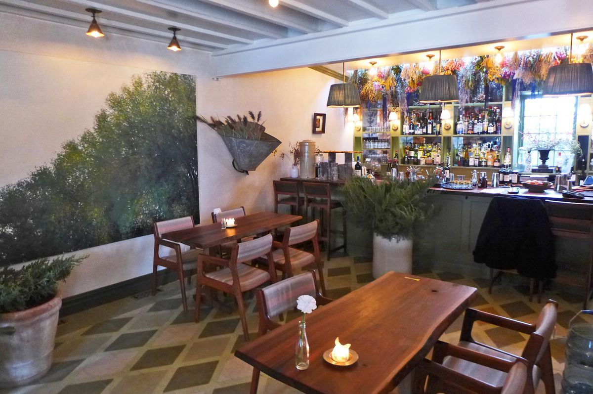 A barroom with a green tree mural, bottles line up on shelves, and dried flowers hanging.