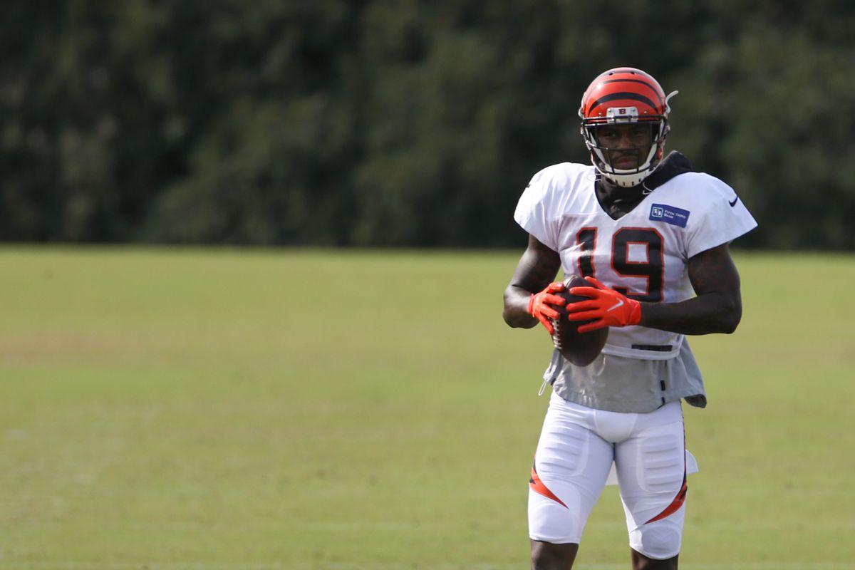 NFL: AUG 21 Bengals Training Camp