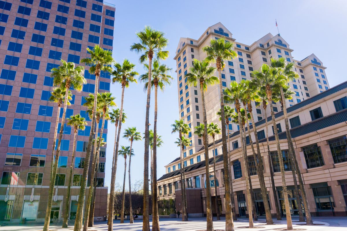 Palm stress and apartment buildings in San Jose.