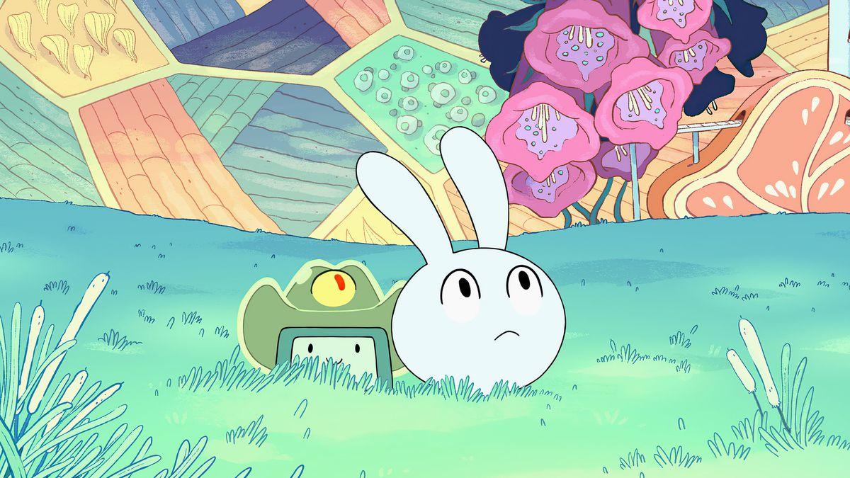 bmo et y5 jettent un œil dans l'herbe