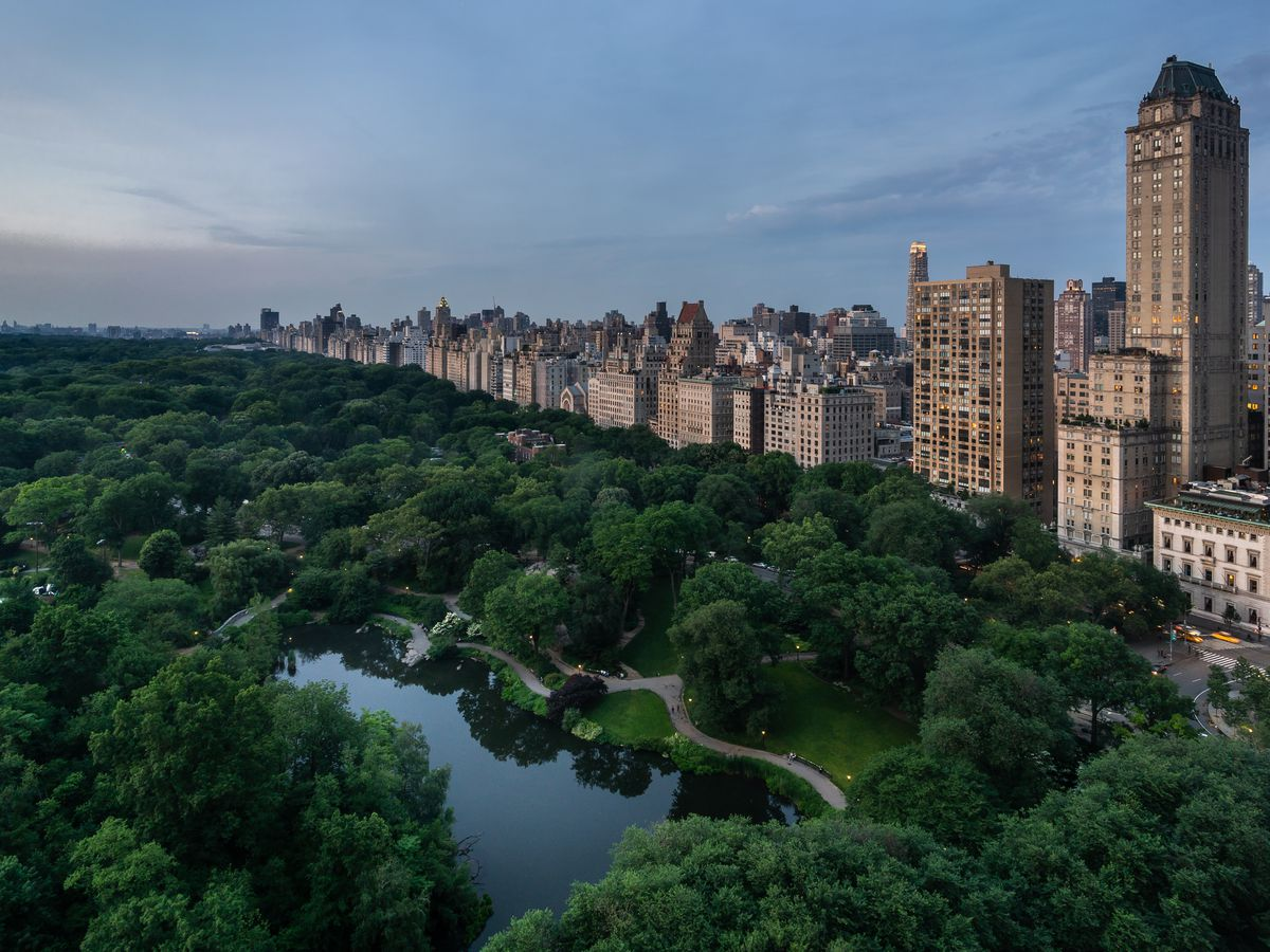 An aerial view of Central Park lush canopy of green trees and one of its ponds.