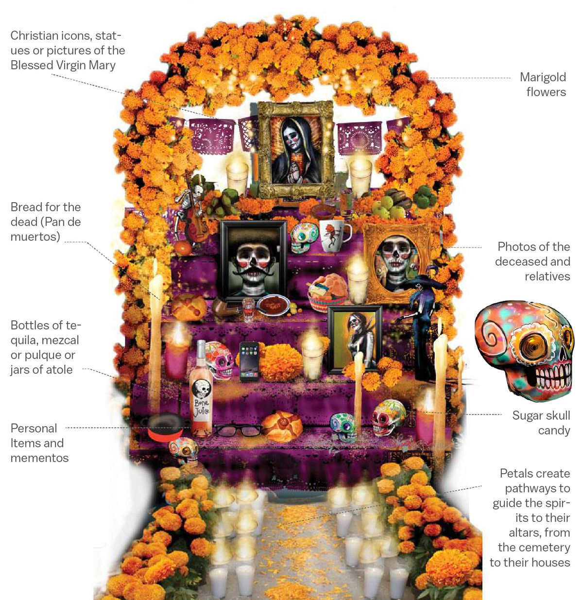 Illustration of an ofrenda, contaning marigolds, bread for the dead, framed photos of dead relatives, bottles of mezcal, and sugar skulls.