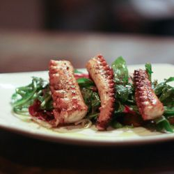 """Squid from Vai Spuntino by  <a href=""""http://www.flickr.com/photos/j0annie/6209446957/in/pool-eater/"""">jwannie</a>."""