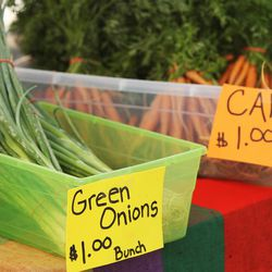 Produce for sale during the Sugar House Farmers Market in Sugar House Park in Salt Lake City  Friday, July 5, 2013.