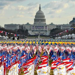Flags line the National Mall in front of the U.S. Capitol before the start of the inauguration of U.S. President-elect Joe Biden and Vice President-elect Kamala Harris on January 20, 2021 in Washington, DC.
