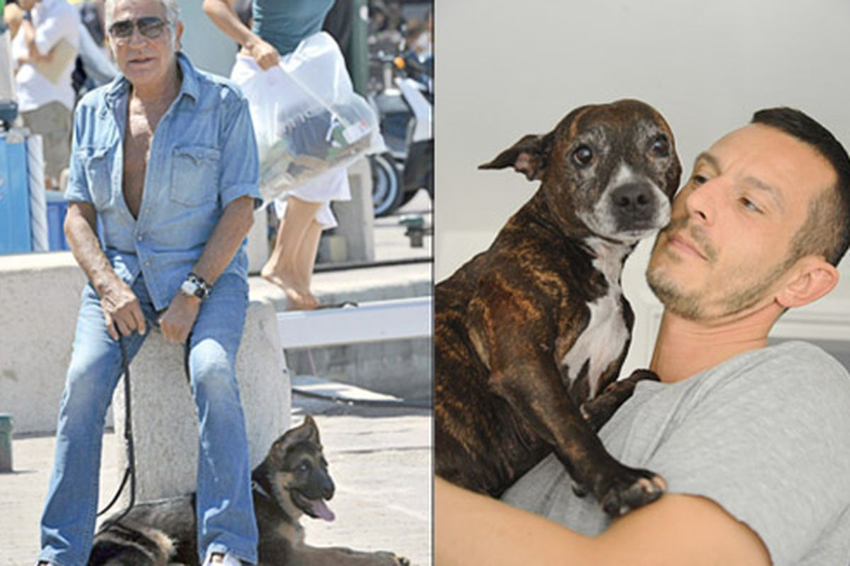 """Roberto Cavalli accessories his all-denim playsuit with a pooch; at right, Jonathan Saunders and his pup Amber. Image via <a href=""""http://www.wwd.com/eye/people/designers-and-their-dogs-5359430/slideshow#/slideshow/article/5359430/5366748"""">WWD</a>"""