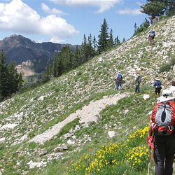 18. From Twin Lakes Pass, hikers follow a shortcut to Davenport Hill. This path is mostly level as it traverses the hillside.